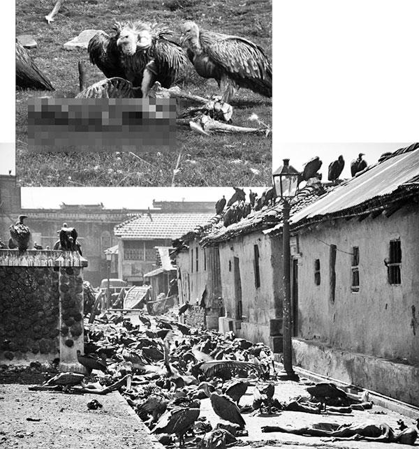 BengalKitligi 3 İNGİLİZ DERİN DEVLETİ VE SÖMÜRGECİLİK ZULMÜ